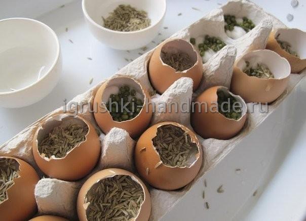 Выращиваем вместе с детьми растения в яичной скорлупе